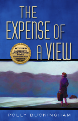 THE-EXPENSE-OF-A-VIEW-e1483997770199